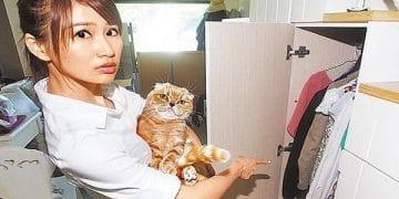 Smart Cat Warns Human Her Ex-boyfriend is Hiding in the Closet