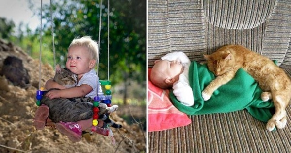 10 Heartwarming Photos That Show Why Cats Are The Best Companions For Kids
