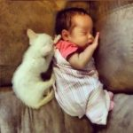 Parents Document Their Daughter Sleeping With Her Cat Everyday Since She Was a Baby