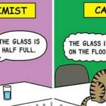 10 Best Cat Cartoon of All Time