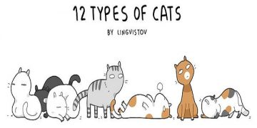 12 Types Of Cats By Lingvistov