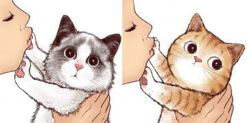 9 No Kisses Cat Illustrations That Every Cat Person Should See!