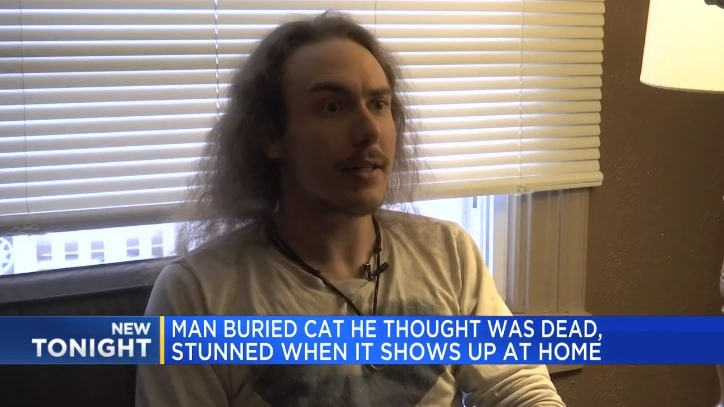 Man Shocked After He Buries The Wrong Cat 1