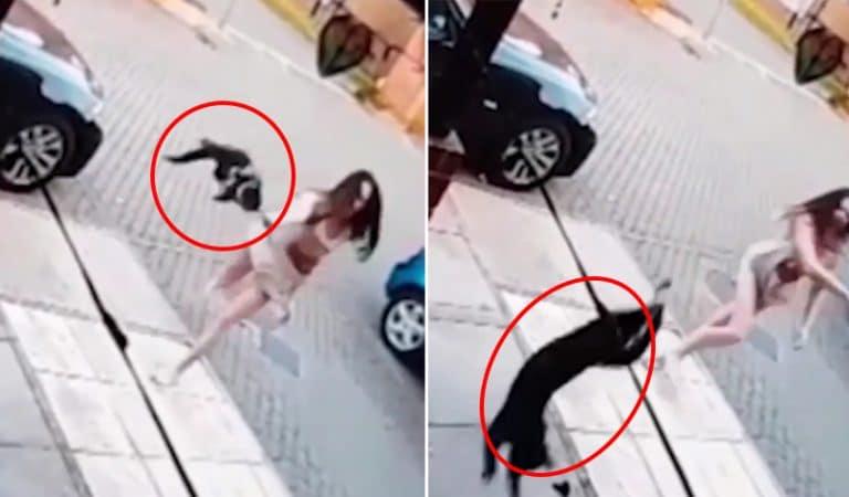 Woman Threw Cat at Neighbour's Door Because 'It kept coming into her garden'