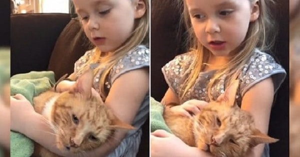 This Little Girl Sings a Wonderful Song to Her Cat In her Last Moments