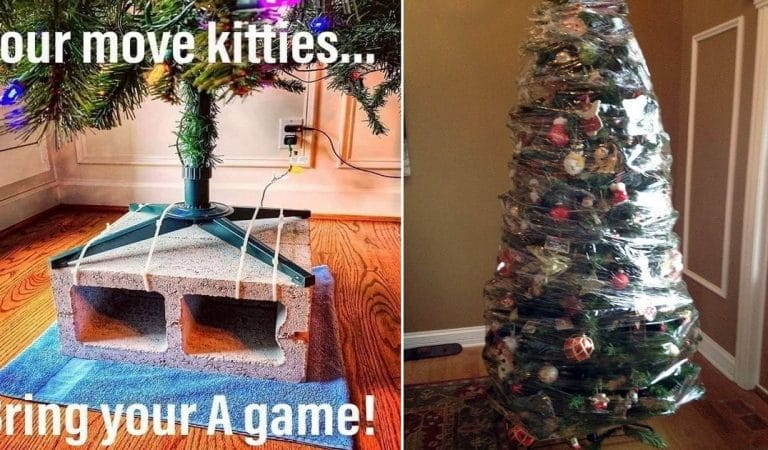 How People Are Hilariously Avoiding The Christmas Tree Chaos!