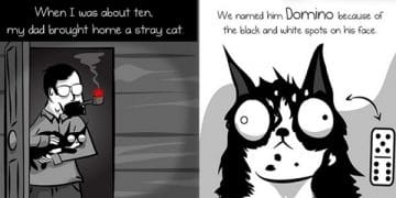 The Legend Of Domino The Cat, Created By The Comic - The Oatmeal