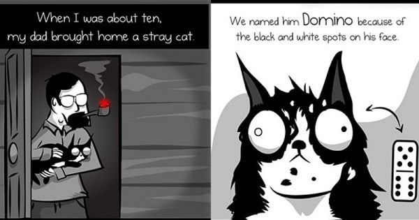 The Legend Of Domino The Cat, Created By The Comic – The Oatmeal