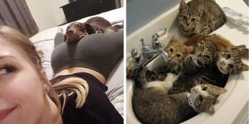 10+ Photos Of Pets Who Get Cozy Wherever They Are!