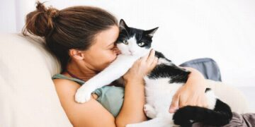 Special Drug for Cats May Protect Humans from COVID-19, a Study Finds