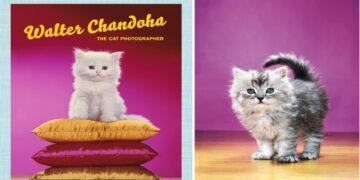 Walter Chandoha, the Godfather of Cat Pics